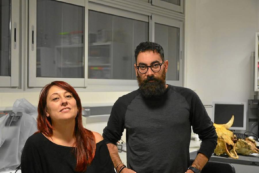 Els investigadors Palmira Saladie i Antonio Rodríguez-Hidalgo. (Foto: IPHES)