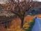 Subirats mostra els seus presseguers en època de floració