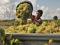 Junqueras i Romeva fan costat als pagesos amb un article al 3d8