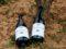 Cellers Torres elabora el primer vi amb la varietat ancestral Moneu